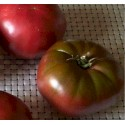 Tomato Noire de Crimée