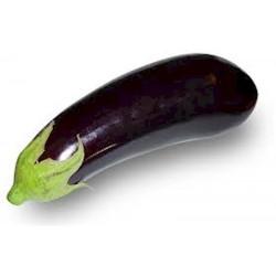 Eggplant Baluroi