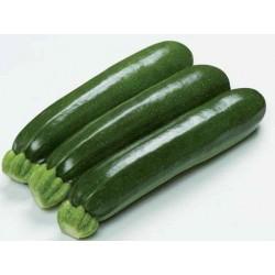 Zucchini Allegria F1