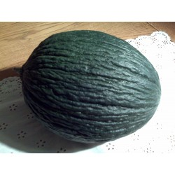 Christmas Melon (Verdau)